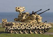 奥地利陆军豹式坦克涂上豹纹迷彩 炫耀实力