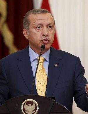土耳其总统:击落侵犯土领空的俄军机符合规则